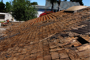 Roof Repair Amp Maintenance Tri County Roofing Charleston